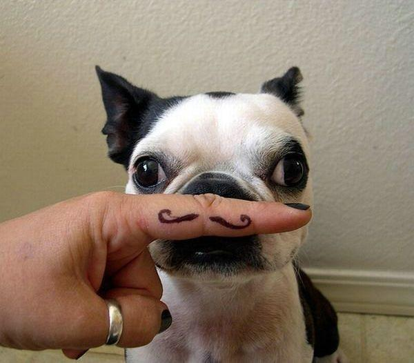 fingerstache3