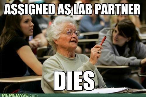 8b854_memes-senior-freshman