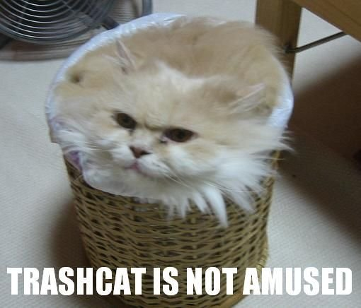 trashcat